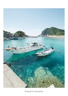 岸辺に停泊する船(写真は岡田拓也さん提供)