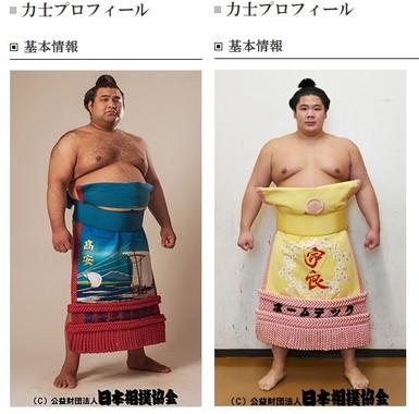 2日目、車いすで土俵をあとにした高安(左)と宇良(画像は日本相撲協会公式サイトから)