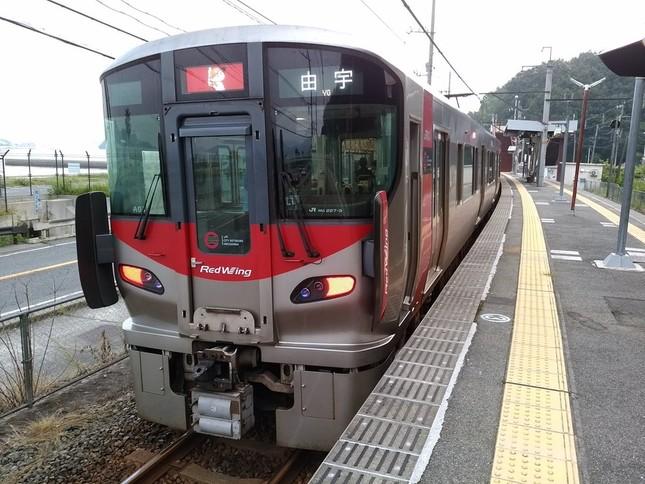 広島各地で報告が相次いだ(写真提供:たにもしんでん @tanimoshinden さん)