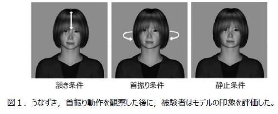 実験に使われたCG画像(両大学の発表資料から)