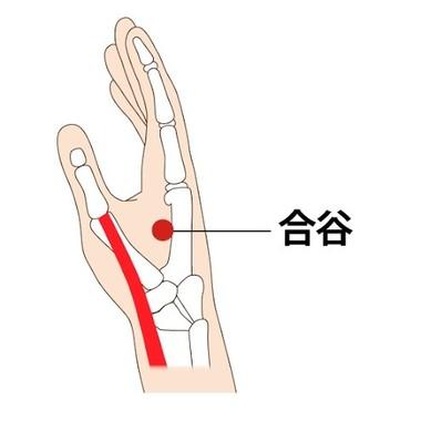 手の親指と人差し指の間、人差し指側の骨の真ん中くぼみ