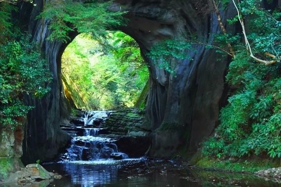 濃溝の滝は「まるでジブリ作品にでてくる森のよう」