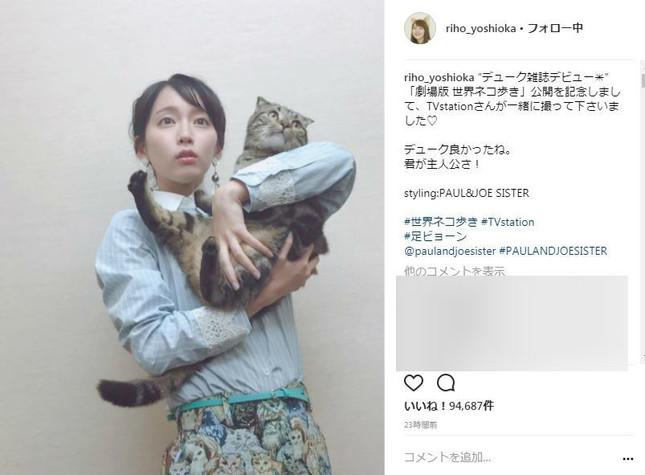 ネコを抱いた1枚(画像は吉岡さんの公式インスタグラムより)