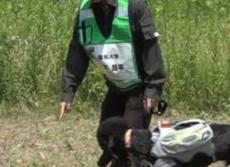災害救助犬の「やる気」が一目でわかるベスト 人命救出に活躍させるため東北大など開発