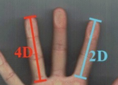月経前のツライ症状は薬指を見るとわかる!指が長い人ほど症状が重くなる衝撃の事実