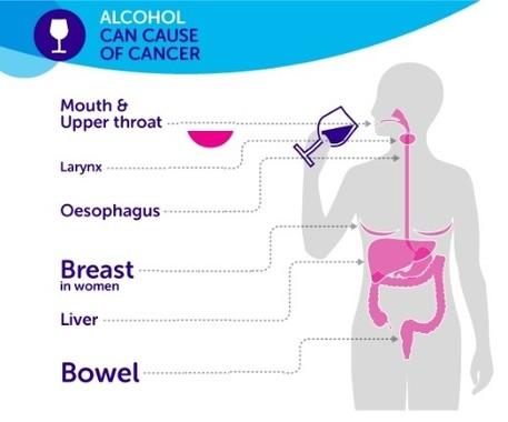米国臨床腫瘍学会が発表した、各がんとアルコールの関係図(同学会のプレスリリースより)