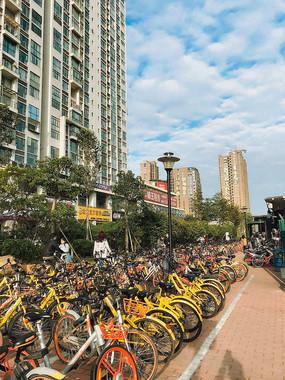 中国では自転車シェアリングが一気に拡大した(広東省深センにて2017年11月23日撮影)