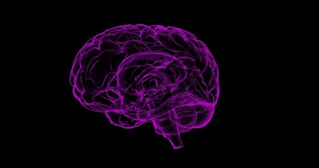 脳が徐々に死んでいく不治の難病