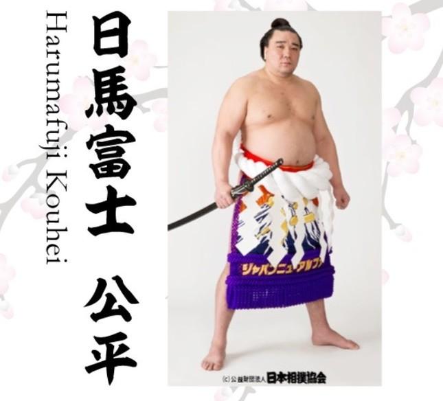 元横綱・日馬富士(画像は伊勢ヶ浜部屋の公式HPから)