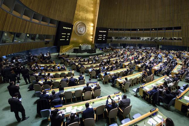 国連総会の決議は圧倒的多数で採択された(UN Photo/Manuel Elias)