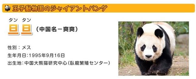 神戸市王子動物園の「タンタン」(神戸市王子動物園の公式ホームページより)