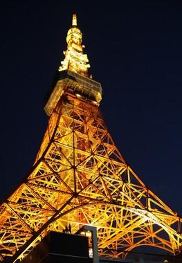 あたたかなオレンジ色の光で東京の夜を照らす(J-CASTニュース撮影)