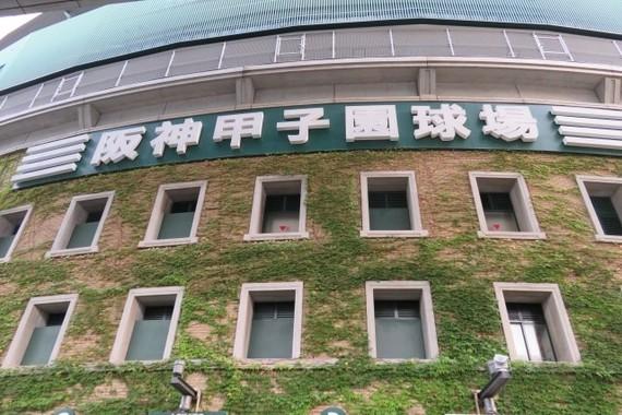 外野席は500円?(写真はイメージ)