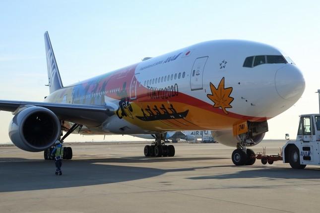 特別塗装機は2020年の大会終了まで運航される
