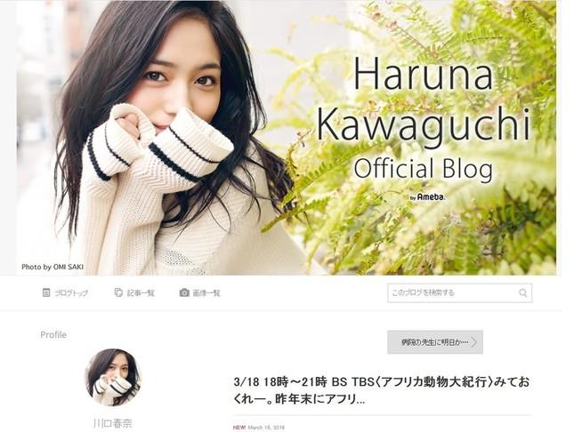 川口さんのブログでも、同じ投稿が紹介されている
