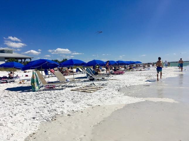 フロリダのハネムーン・アイランド州立公園などの美しいビーチは、冬場、多くの避寒者でにぎわう