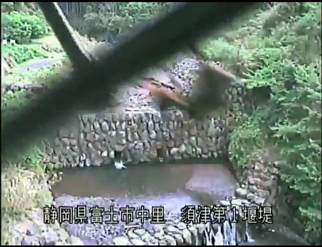 防災カメラのワイパーで巣作りを始めてしまったハチ(提供:国土交通省中部地方整備局富士砂防事務所)