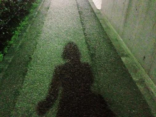 夜道の歩き方をめぐって紛糾(写真はイメージです)