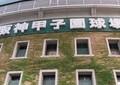 甲子園、地震で「史上最少」観客数 それでもロッテ、オリの集客上回る