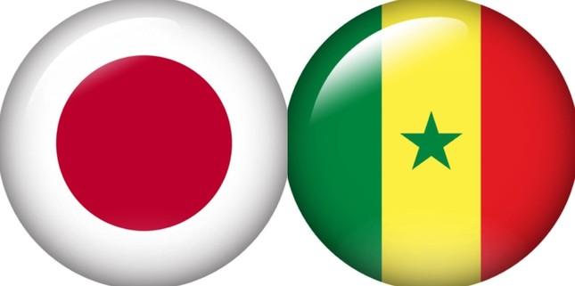 日本代表と戦ったセネガル代表のアリュー・シセ監督が絶賛された