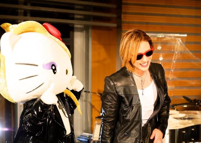 YOSHIKIさんは再来週にもyoshikittyと再会するという