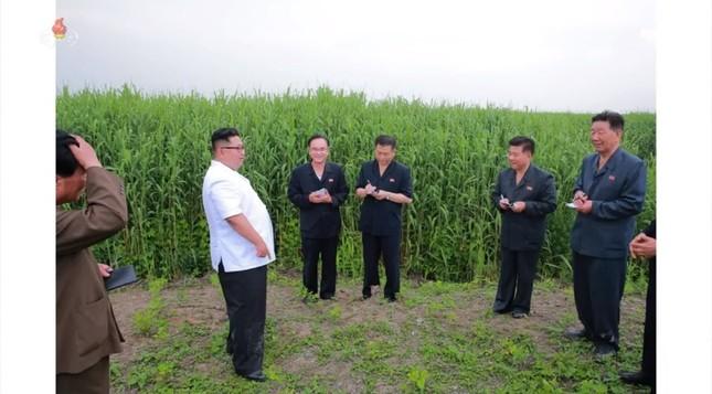 農場を指導する正恩氏のズボンは泥で汚れているように見える(写真は朝鮮中央テレビから)