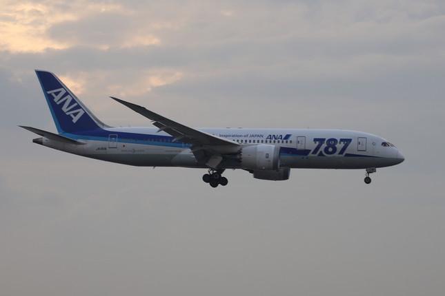 全日空(ANA)のボーイング787型機(2015年撮影)