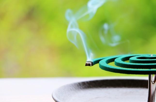 猛暑の影響は「蚊取り線香」にも…?