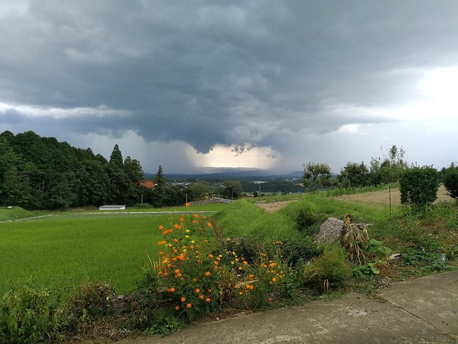 ゲリラ豪雨の「雨柱」は岡山でも。写真は@maruchan_briさん提供、13日撮影