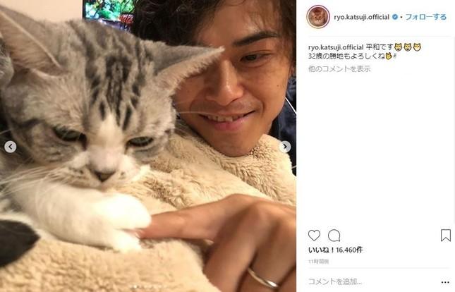 猫と戯れる勝地涼さん(勝地さんのインスタグラムより)