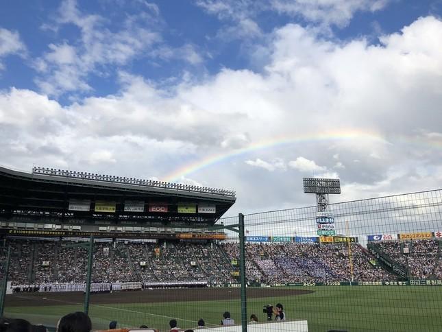 きれいな虹がかかった(写真はみたらしさん提供)
