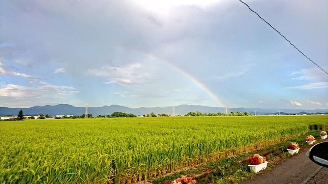 秋田県でも、虹がかかっていた(写真は夢-のん-さん提供、撮影は16時50分ごろだという)