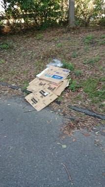 吹田スタジアム周辺に放置されたゴミ(提供写真)