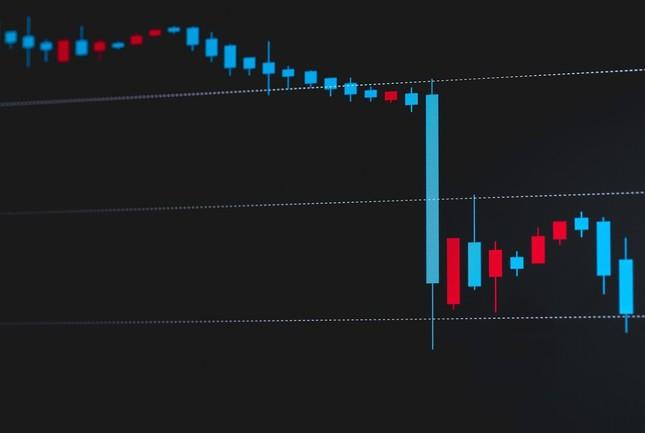 資生堂株は一時、大きく下落した
