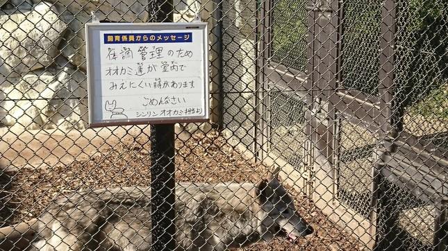 東山動植物園のシンリンオオカミ。注意書きの看板の左下に、小さく絵が描かれている(写真提供:ゆき(@yukiassnowww)さん)