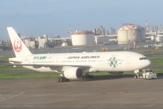 欠航したJL335便には、定員375席395人がチェックインした(写真は同型機)