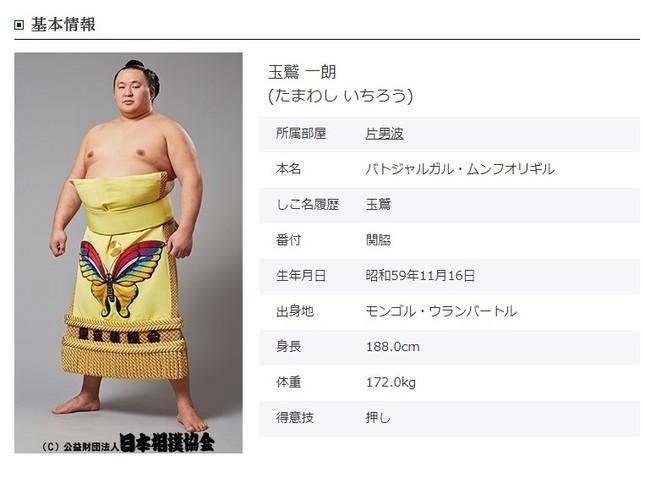 玉鷲関のプロフィール(日本相撲協会の公式サイトより)