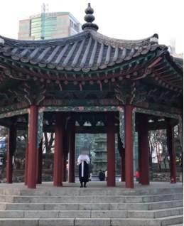 「臨時政府」宣言をした「自由朝鮮」サイトには動画も掲載された