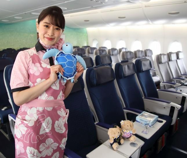 1階席にはエコノミークラス383席がある。客室乗務員が手にしているのは機内販売される「HONUぬいぐるみ」だ