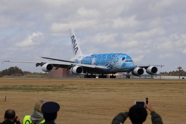 1号機はハワイの「空」を連想させる濃い青の塗装だ(2019年3月撮影)
