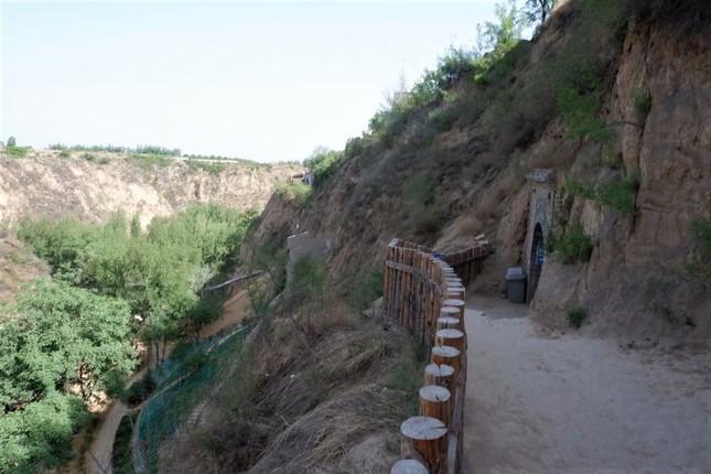 「ヤオトン」と呼ばれる黄土高原独特の洞穴式住居。周りに結構緑も増えてきた(山西省介休市)