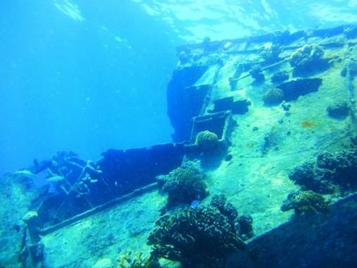 水中遺跡と聞くとお宝が眠っているようなイメージだが、実際の研究は地道だ(画像はイメージ)