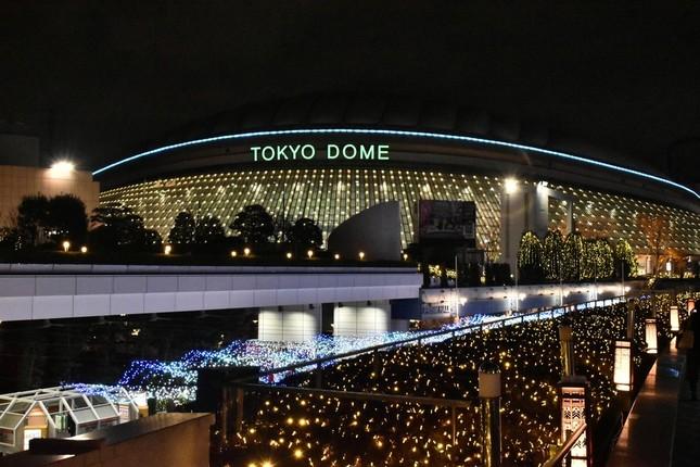 東京ドームの主役を育てられるか(イメージ)