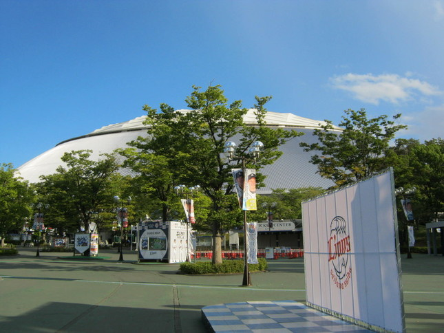 松坂、内海が所属する西武。ベテランの活躍に期待(イメージ)