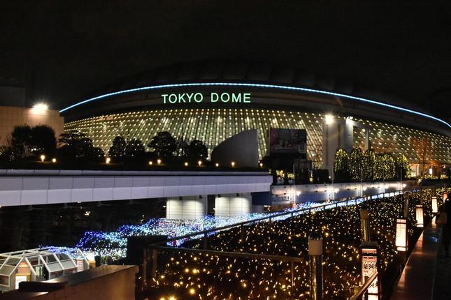 本拠地東京ドームで活躍を見せられるか(イメージ)