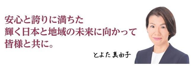 衆院議員時代の豊田真由子氏の公式サイトより