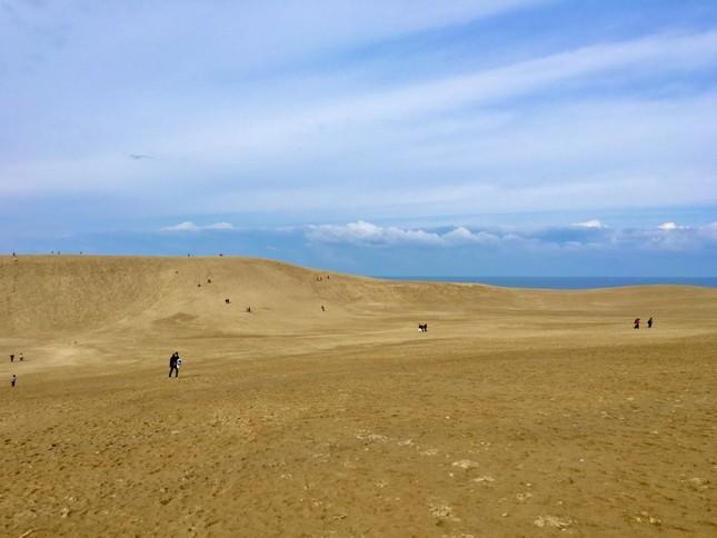 記事中でも紹介があった人気観光地・鳥取砂丘