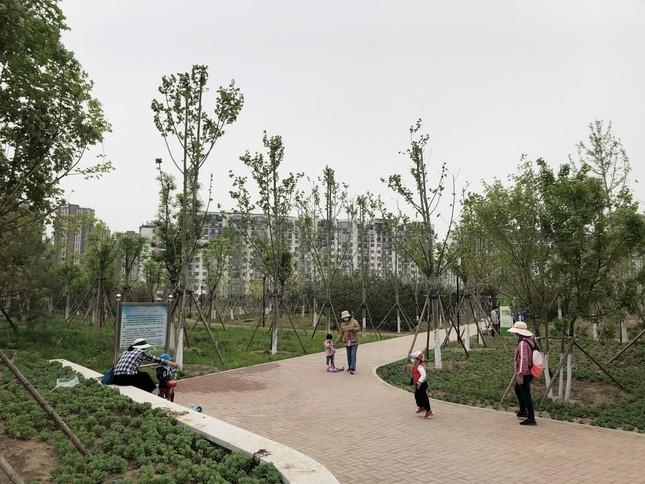 北京市内の公園では運動する大人、遊ぶ子どもが多くなっている(2020年4月16日、筆者撮影)