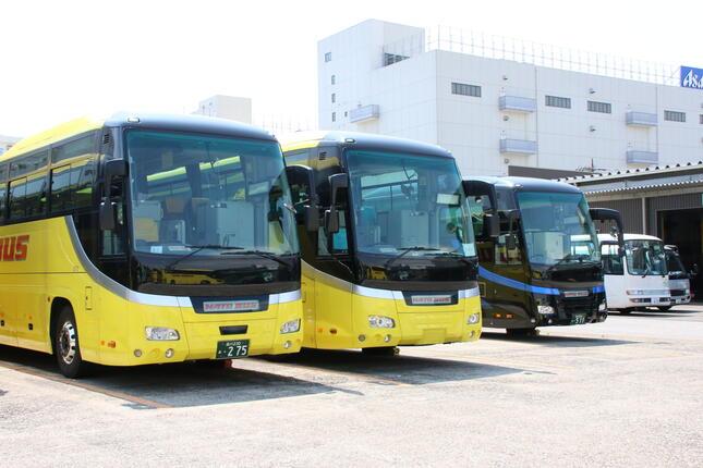 「経費削減」のためもあり、ナンバープレートを外したはとバス(中央、2020年8月25日、東京都大田区)