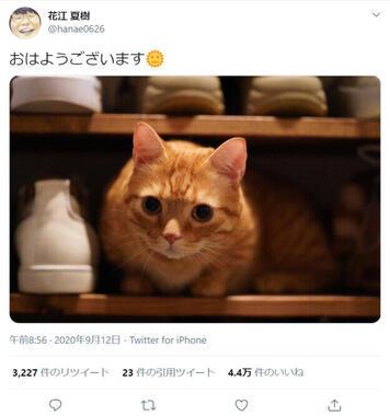 花江夏樹さんのツイート